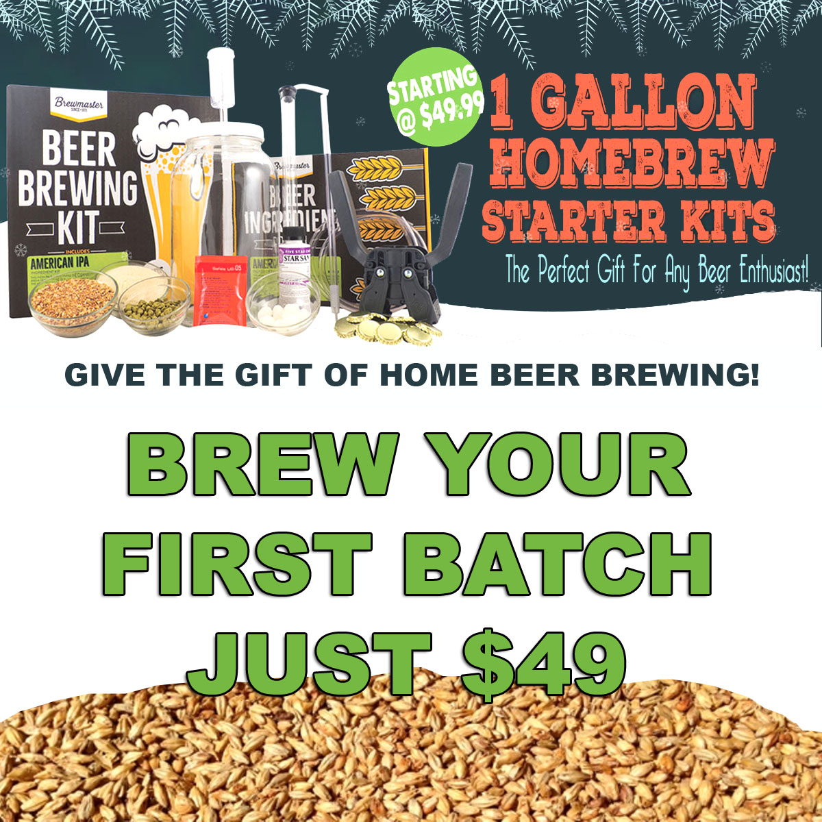 Home Brewer Promo Code for Home Beer Brewing Kit Just $49 Coupon Code
