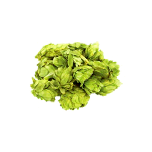 MoreBeer Get 10% Off Select Hop Varieties at MoreBeer! Coupon Code